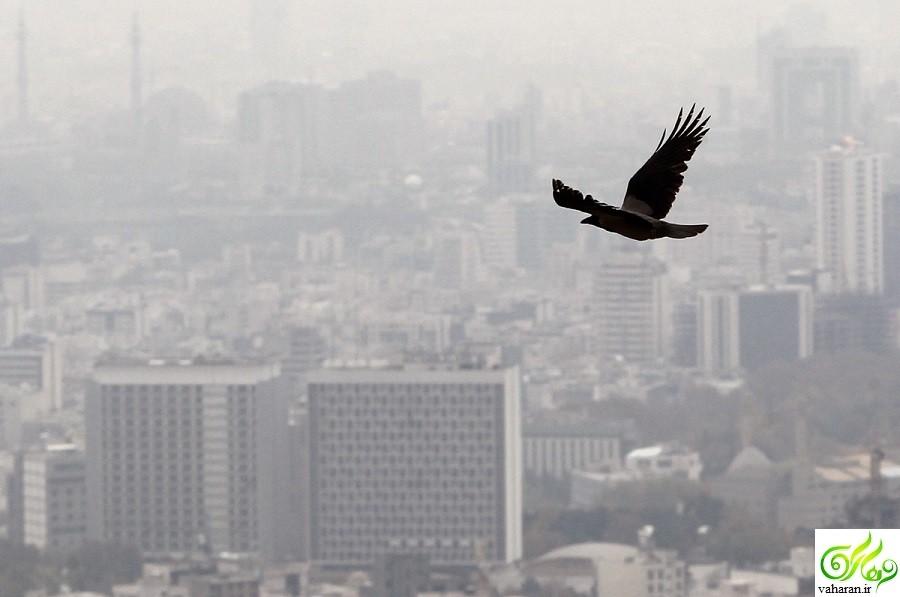 ادامه آلودگی هوای تهران تا جمعه ۲۸ آبان ۹۵