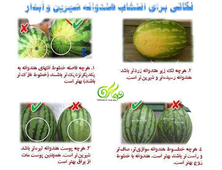 روش های جالب و آسان برای تشخیص هندوانه شیرین و آبدار