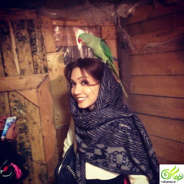 پست شهرزاد کمال زاده در مورد ازدواج با طوطی + عکس