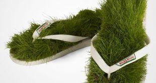 انواع مدل سبزه عید 96 / سبزه سفره هفت سین نوروز 96