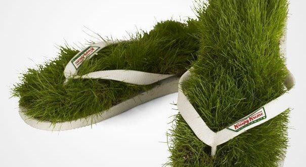 انواع مدل سبزه عید ۹۶ / سبزه سفره هفت سین نوروز ۹۶