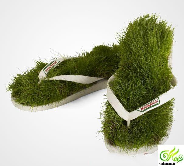انواع مدل سبزه عید 97 / سبزه سفره هفت سین نوروز 97