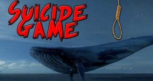 دانلود رایگان بازی نهنگ آبی 2017,دانلود بازی نهنگ آبی 2017,دانلود بازی نهنگ آبی برای اندروید,دانلود bluewhale,دانلود بازی نهنگ آبی برای آیفون,blue whale