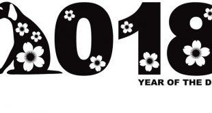 فال سال 2018 برای ماههای مختلف